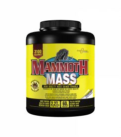 Mammoth Mass Interactive Nutrition Maroc